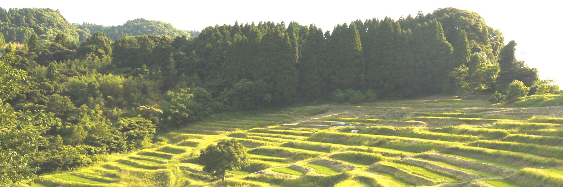 千葉県建築士会